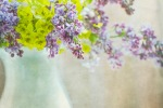 Lilacs in Vase