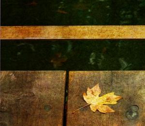 Leaf Zen K