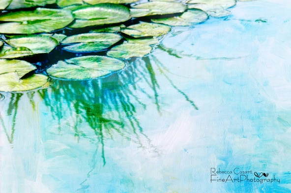 Water Lily - Lily Pads with texture