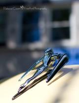 McM- Sun bather ornament