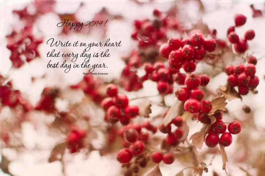 Happy New Year Berries