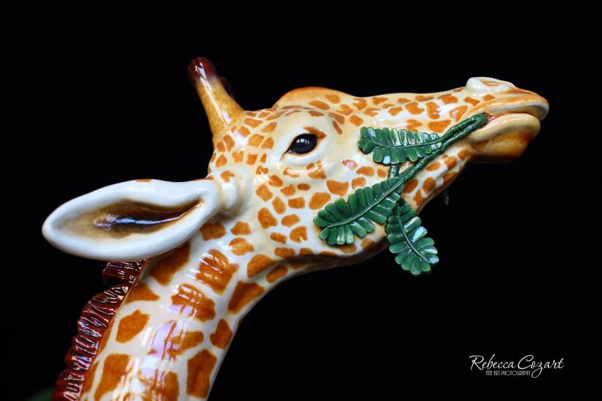 FB - Giraffe