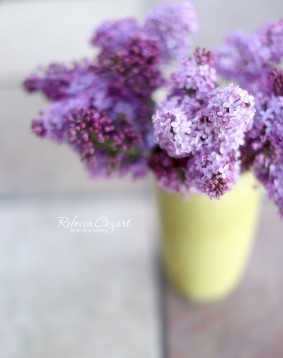 FB Lilacs - In yellow vase