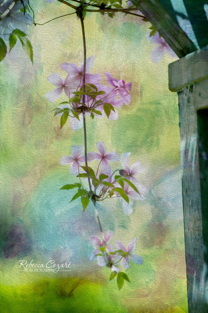 FLOWERS - pink vine with texture oil pain