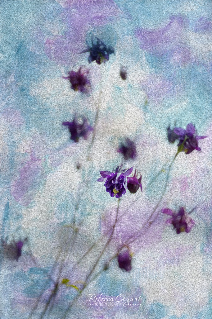 FLOWERS - purple small with texture oil paint