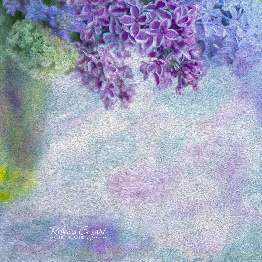 Lilacs - Square oil paint