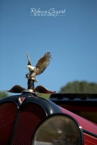 Car - eagle
