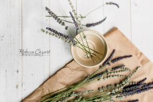 STILL LIFE - Lavender still life 2