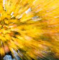 abstract-leaves-26