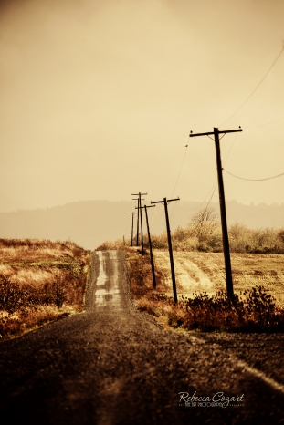 odd-country-road