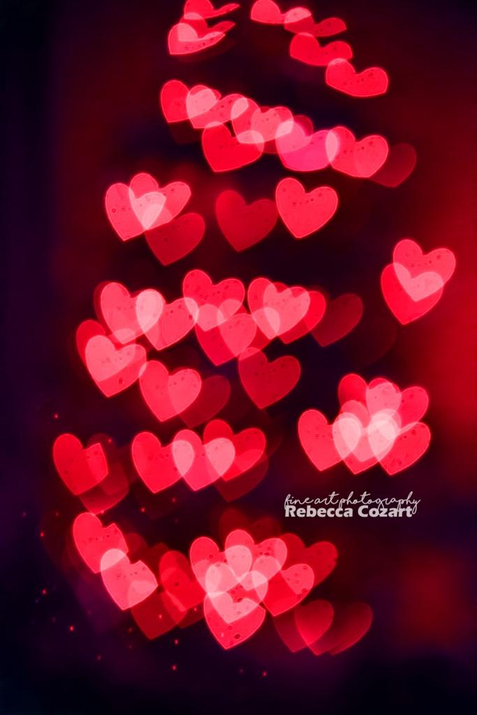 xmas-heart-tree-bokeh-2