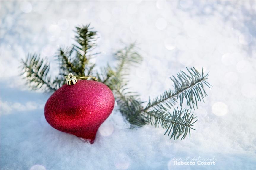 xmas-ornament-in-snow