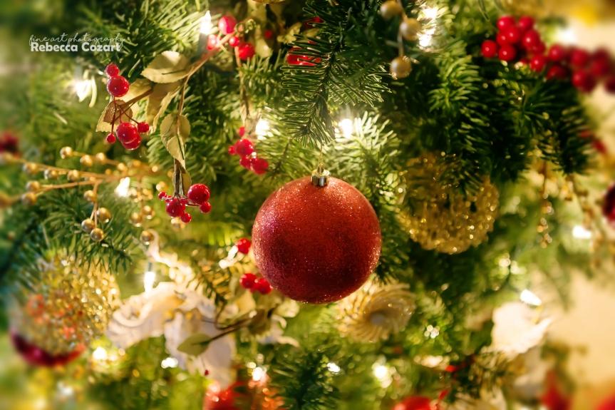 xmas-ornament-on-tree