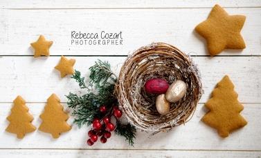 FB - Gingerbread Cookies