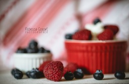 FOOD - Yogurt and berries