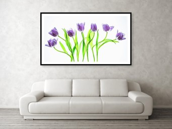 purple tulips couch